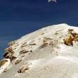 Atze am Berg